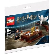 LEGO® Harry Potter™ Haris Poteris ir pelėda Hedviga 30420