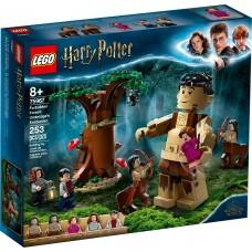 LEGO® Harry Potter™ Uždraustasis miškas: Ambridž susitikimas 75967