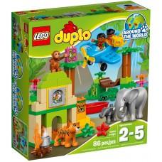 LEGO DUPLO Džiunglės 10804