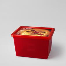 LEGO NINJAGO Didelė dėžė daiktams 4094